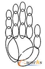 虚拟手几何模型
