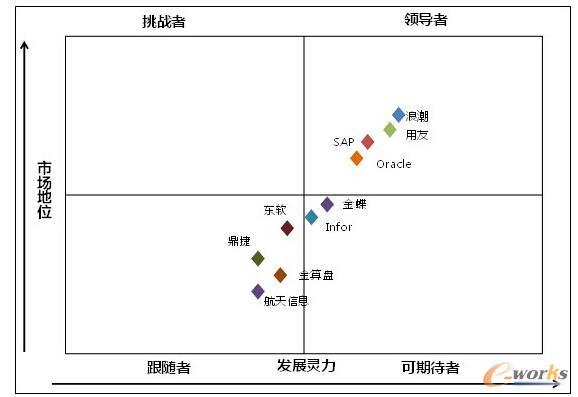 图1  2013年管理软件市场竞争格局